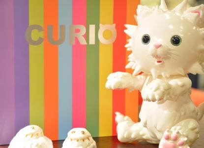 curio-pkg-02.jpg