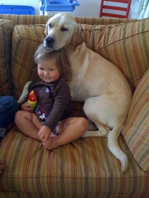 赤ちゃんと仲良しのワンちゃん2