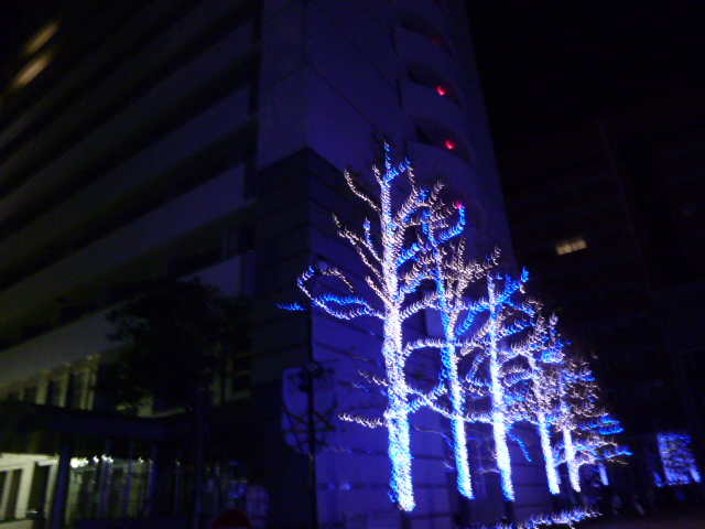 徳島文理大学のイルミネーション