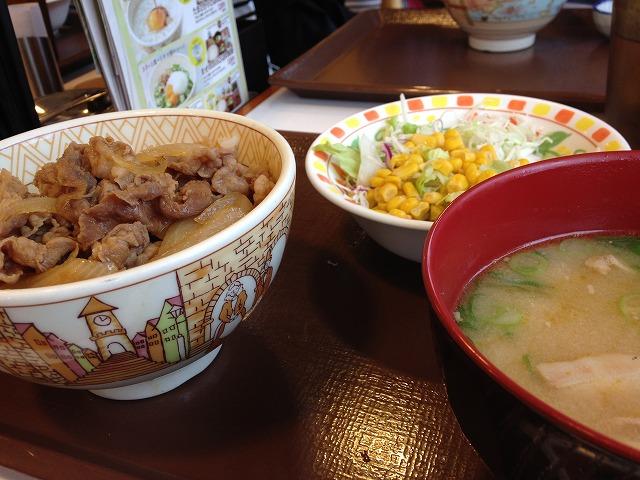 shinuma 15