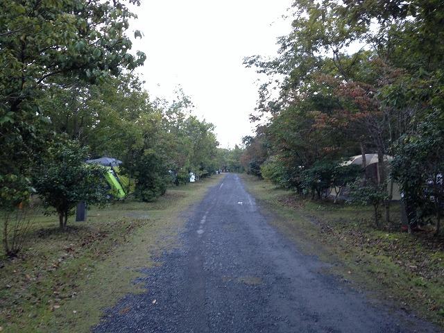shinuma 19