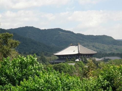 大文字と大仏殿