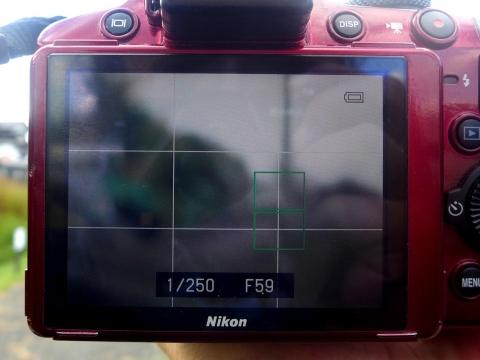 15-11-28-F06.jpg