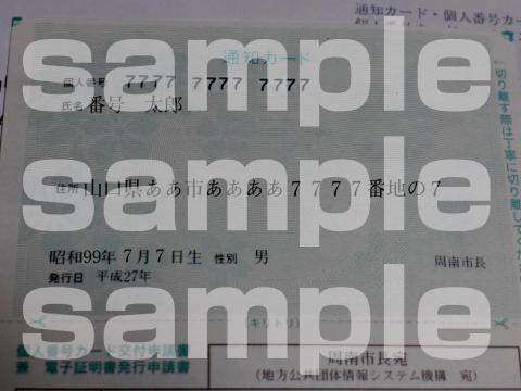 15-12-07-F03.jpg