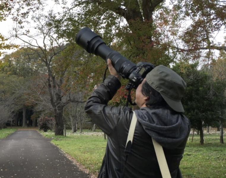 150-600撮影風景