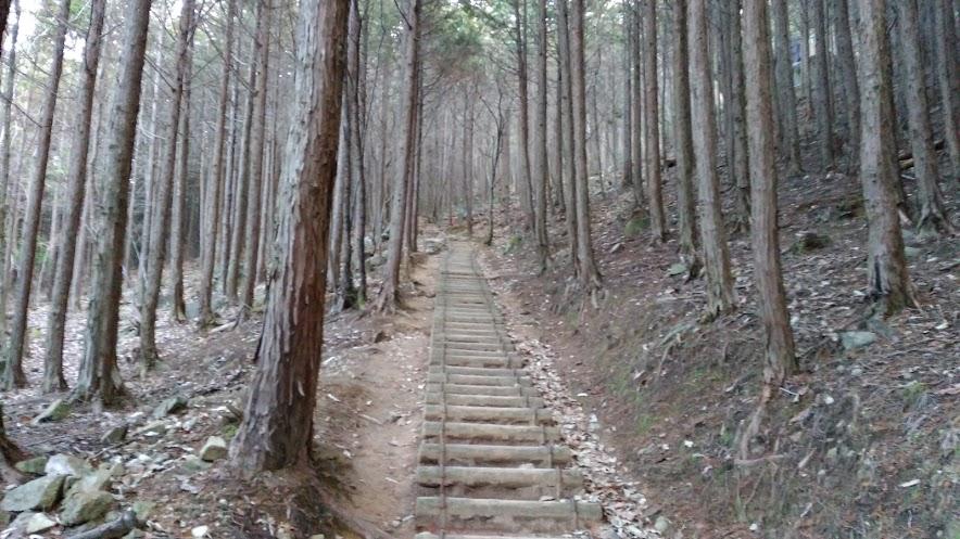 剣尾山/登山道