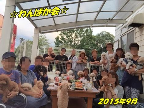 20150921わんばか会