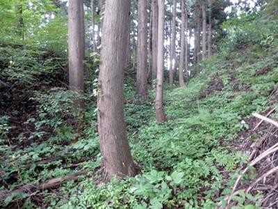 栃尾城18