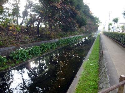 西条藩陣屋09