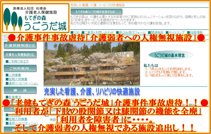 医療法人社団 「松徳会」 介護老人保健施設「もてぎの森 うごうだ城」4