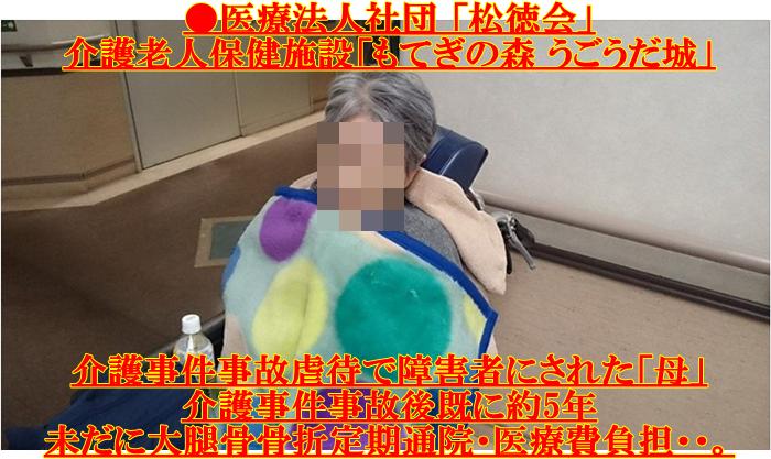 老健「もてぎの森 うごうだ城」通院 損保ジャパン日本興亜 介護事件事故虐待