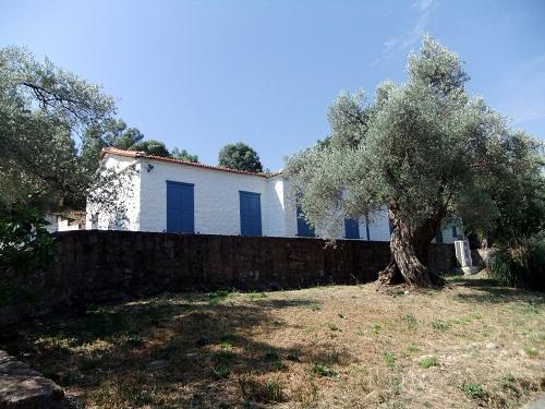 ヴァリア_セオフィロス博物館 (1)