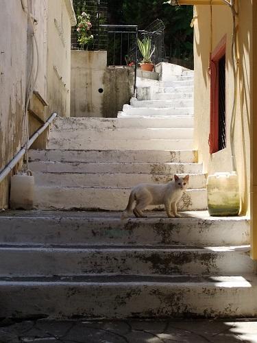 リムノス_ミリナの街で (4)