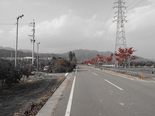 PA200542.jpg