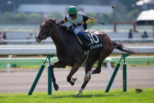 【競馬】2015年のスプリンターズSはハイレベルな競走になる