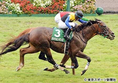 【競馬】新潟記念 反省会場