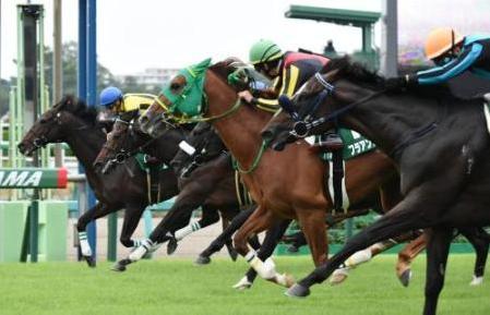 【競馬】開幕週なのに追い込みが決まりまくる中山の馬場