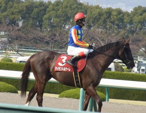 【競馬ネタ】頑丈な馬総合スレ