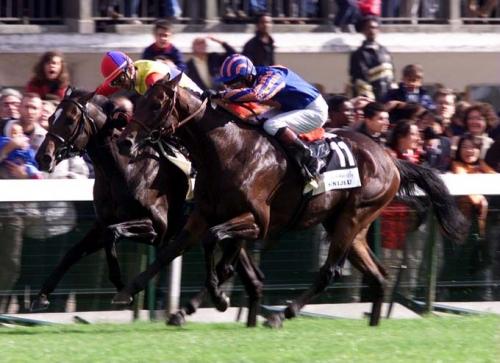【競馬ネタ】過去18頭の凱旋門賞馬で東京芝2400m戦