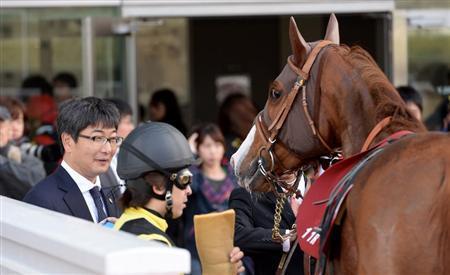 【競馬ネタ】意識高い系の厩舎にありがちなこと