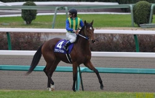 【競馬】史上ピーク最速の超早熟馬を決めよう