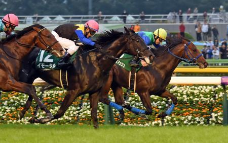 【競馬】《サウジアラビアRC》イモータル単に100万円賭けてしまった