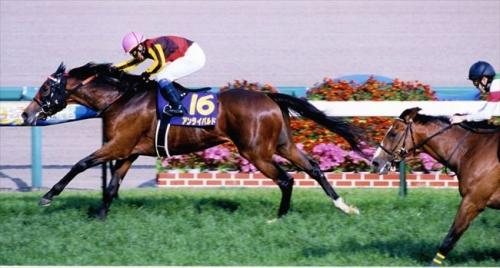 【競馬】《菊花賞当日》第5R 伝説の新馬戦