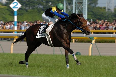 【競馬】キングカメハメハ産駒が中央G1全部勝ちそうな件