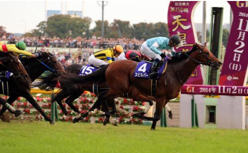 【競馬】スピルバーグ引退、種牡馬入り 繋養先は未定
