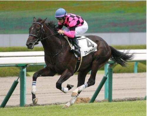 【競馬】《東スポ杯2歳S》松国「スマートオーディンはバディスティーニより能力上」