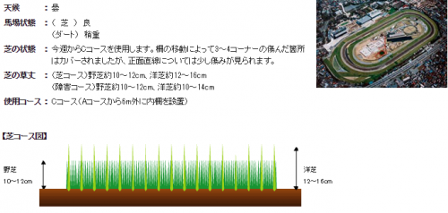 【ジャパンカップ】でどのくらい散水して偽良馬場発表にするのか?