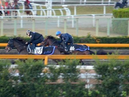 【競馬】第2回ラジオNIKKEI杯京都2歳S(GⅢ) part1