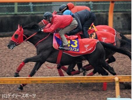 【チャンピオンズC】ノンコノユメ加藤征「中京は先行有利。相手強い。負けて当然」