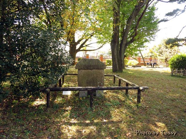 庭の古い石棺