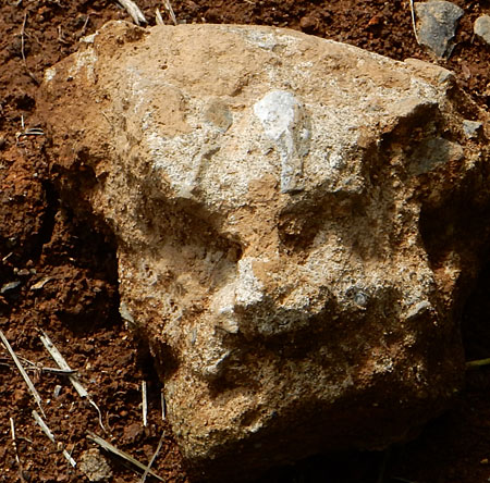 150902犬面石