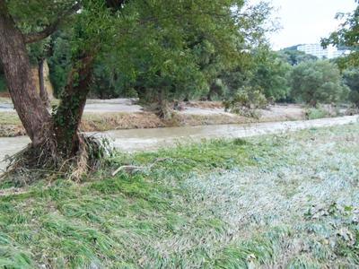 P9120039大雨後