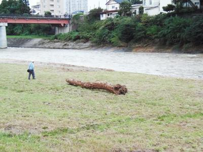 P9120050大雨後