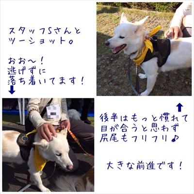 2015-10-21-001.jpg