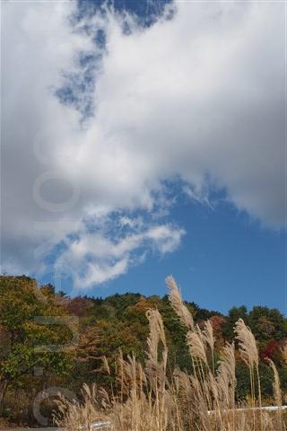 2015.10.25 葛尾村 6