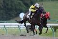 150919本田騎手が岩手初勝利
