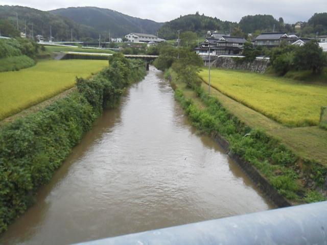27825ukangawa.jpg