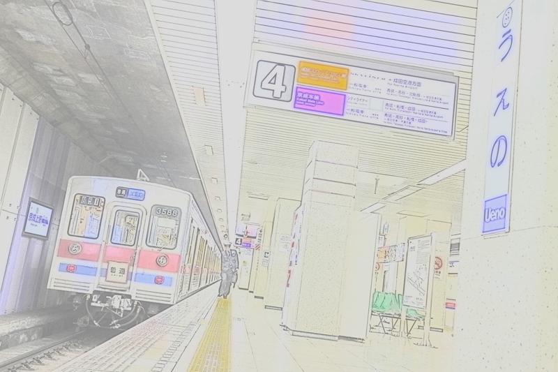 IMG_9115.jpg