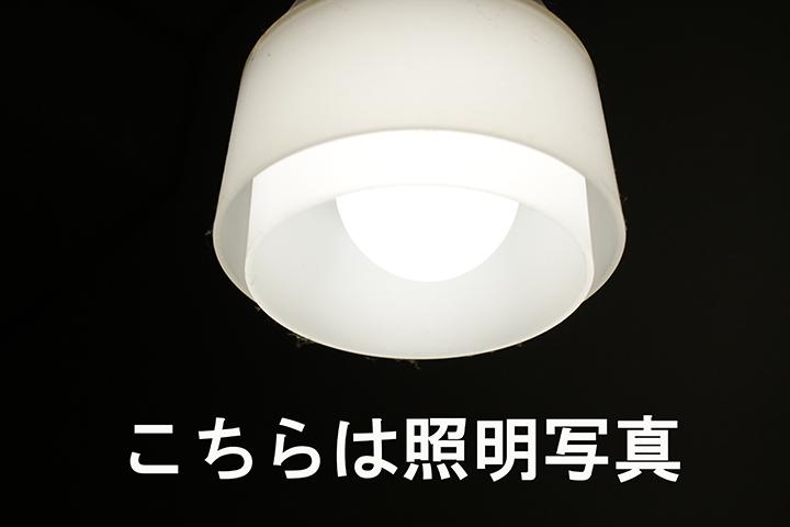 IMG_0501.jpg