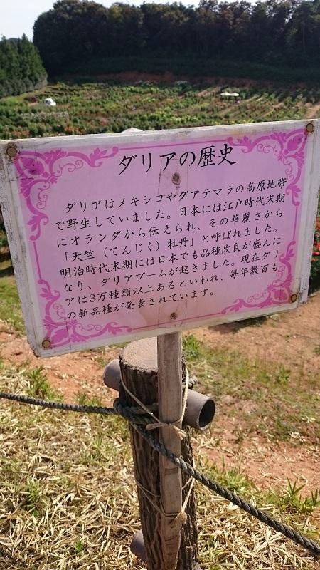 H27_9_吉備支部_研修旅行 (18)