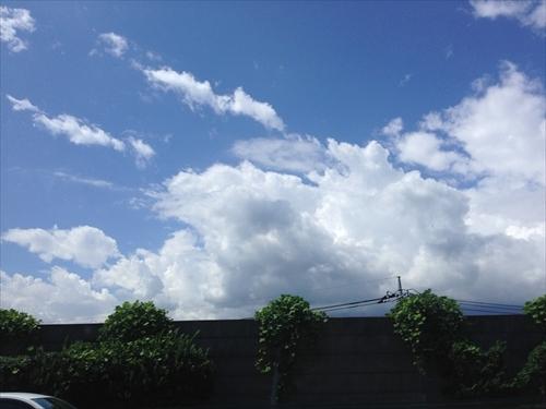 2015東京遠征8月28日 (20)_R