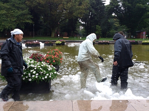 2015東京遠征8月30日 (102)_R