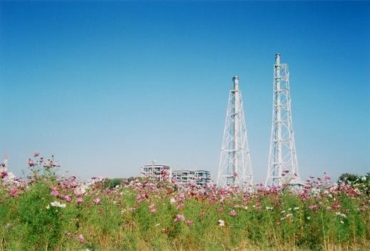 TOY-1051_Natura.jpg