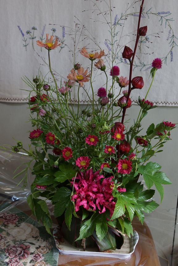 秋の草花15-10-23