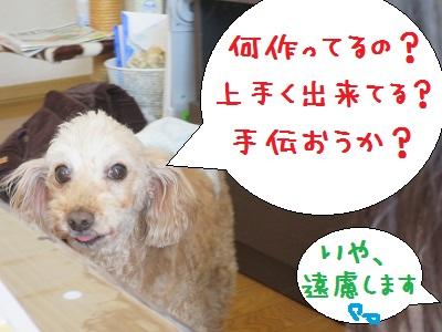 IMG_5735.jpg