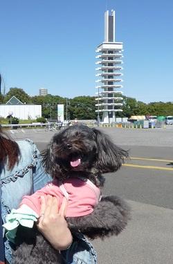オリンピック記念塔